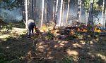 Горски пожар в Сакар планина, огънят е обхванал около 5000 дка