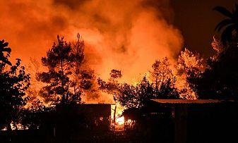 Пожарът в Твърдица се разраства, огънят е обхванал 500 декара борова гора