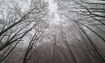 Интензивни валежи в Централна и Източна България